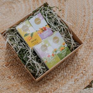 Ceilonas lielo lapu zaļās tējas dāvanu komplekts ar mango tēju, augļu tēju, zemeņu tēju, soursopu tēju
