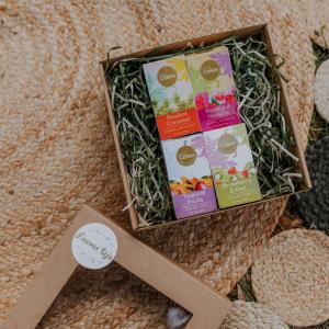 Ceilonas zaļas tējas un bezkofeīna dāvanu komplekts ar karameļu tēju, hibiska tēju, augļu tēju, zemeņu tēju